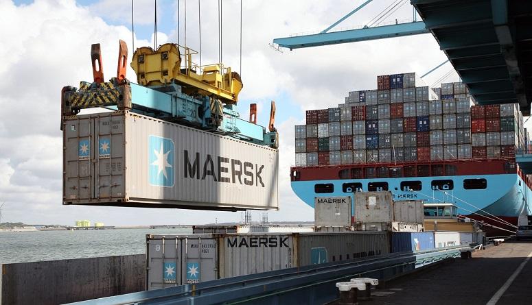 El estratégico papel de las Embarcadoras en la  Importación de vehículos